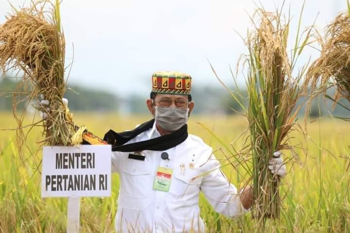 Syahrul Yasin Limpo Kementan