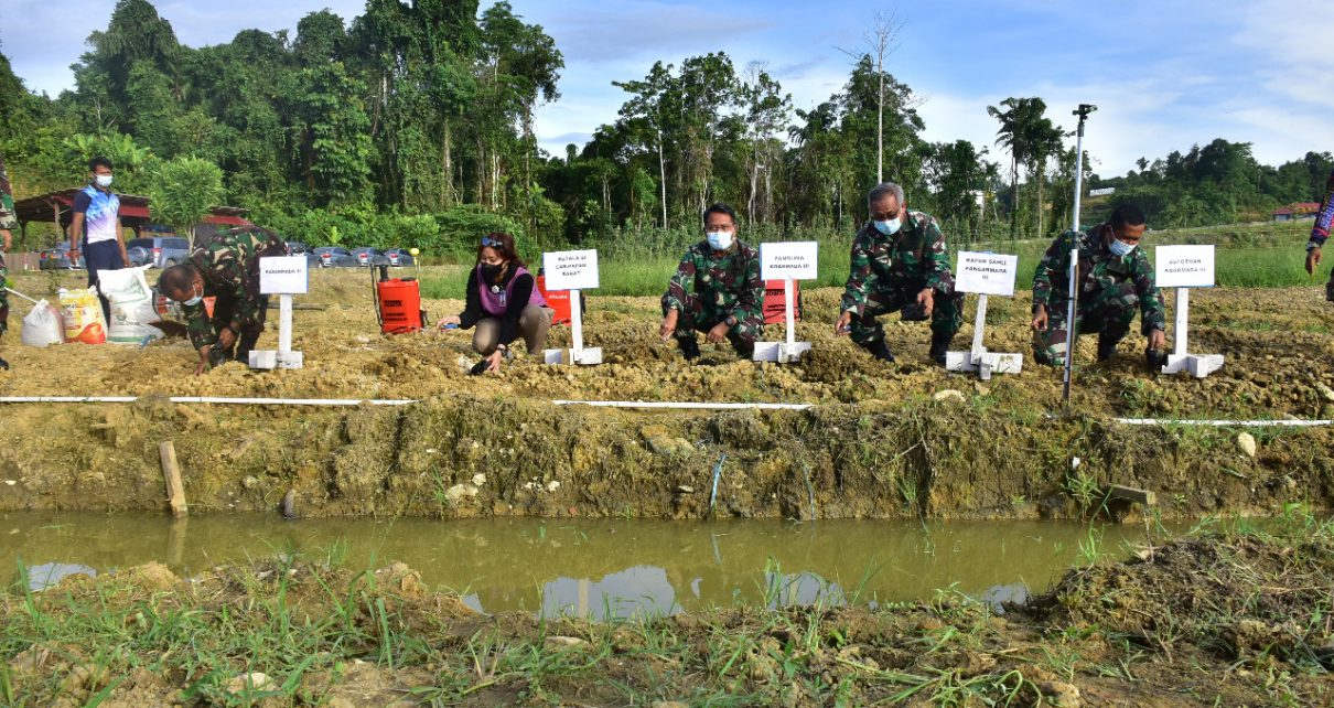 TNI AL Sinergi Dengan Bank Indonesia Uji Coba Lahan Pertanian Dukung Ketahanan Pangan
